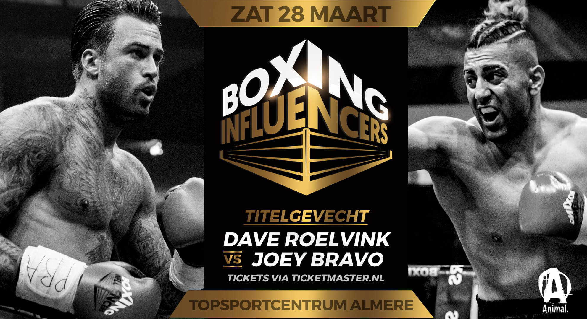 Dave-Roelvink-vs-Joey-Bravo_V3